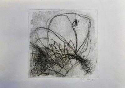 Elke Czudai: Schmetterling und Spinne, Kaltnadel 37x28,5